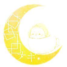 ナキの画像(アオギリに関連した画像)