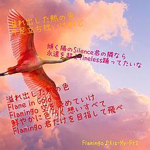Flamingo歌詞画の画像(プリ画像)