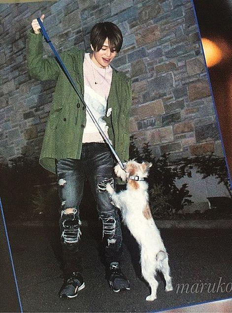 犬とじゃれ合う♥風磨くん♥可愛い♥の画像(プリ画像)