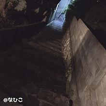 夜道の画像(風景に関連した画像)