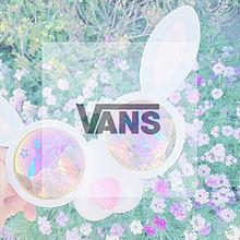 VANSの画像(半透明に関連した画像)