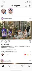 比嘉愛未 浅利陽介 ミツカン CMの画像(ブルーに関連した画像)