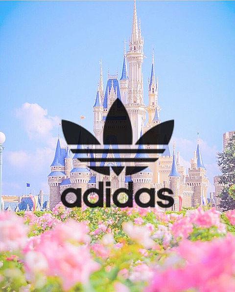 adidas ディズニー シンデレラ城の画像(プリ画像)