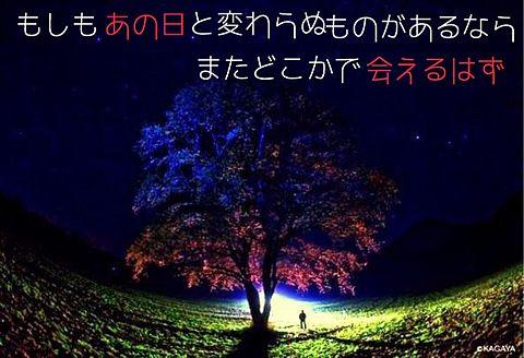 嵐 Sakuraの画像(プリ画像)