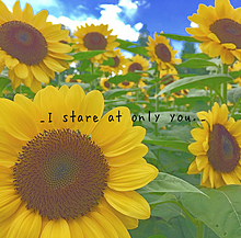 _I stare at only you._の画像(復縁に関連した画像)