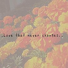 _Love that never changes._の画像(復縁に関連した画像)