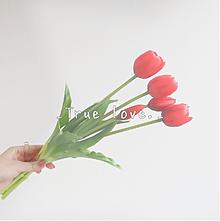 _True love._の画像(復縁に関連した画像)