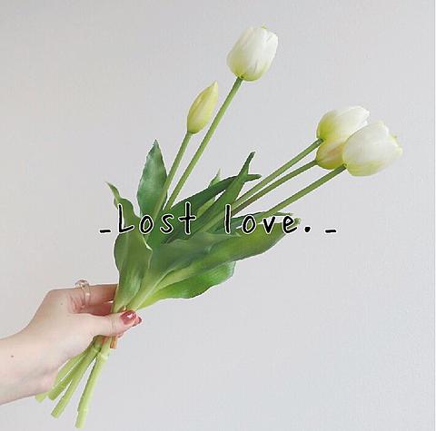 _Lost love._の画像 プリ画像
