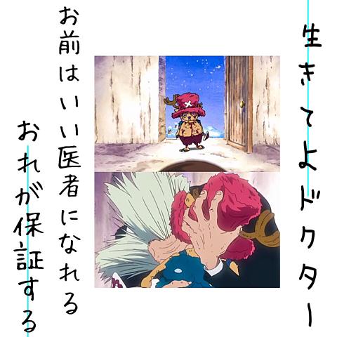 ONEPIECEの画像 プリ画像