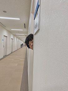 草薙くん2の画像(お笑いに関連した画像)
