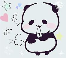 おもちがおなかにつまっている  可愛いパンダさんの画像(おもちに関連した画像)