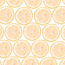 レモン断面 オレンジ 橙色の画像(プリ画像)