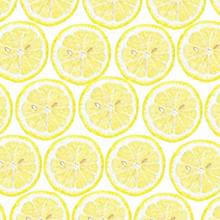 レモン断面 黄色 イエローの画像(プリ画像)