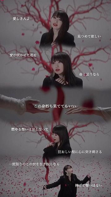 水樹奈々 枠恋の画像(プリ画像)