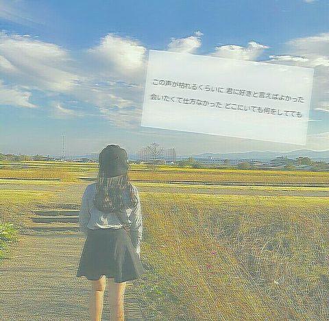 __歌詞画__の画像(プリ画像)
