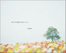 100万回のI love you   rake プリ画像