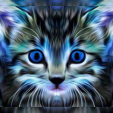 猫の日🐈️アートなヨコミミ様 プリ画像