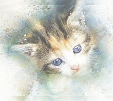 猫の日🐈️水彩画のヨコミミ様 プリ画像