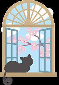 桜と黒猫の画像(黒猫に関連した画像)
