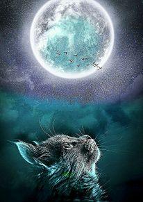 満月と猫 プリ画像
