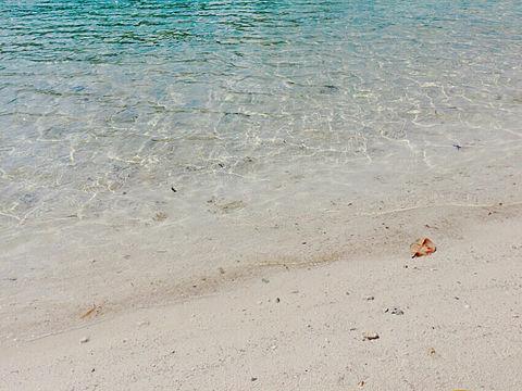 石垣島いってきた✨の画像(プリ画像)