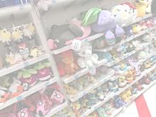 pokémonの画像(ローラに関連した画像)