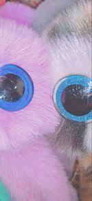 人形の画像(人形に関連した画像)