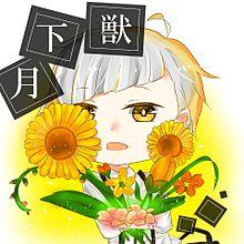お花!!の画像(プリ画像)