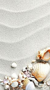 素材の画像(貝殻に関連した画像)
