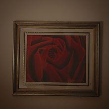 薔薇の画像(ストリートに関連した画像)