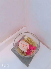 お花🌸の画像(お花に関連した画像)