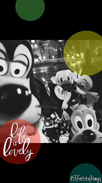 ミッキーとミニーの誕生日💕の画像(プリ画像)