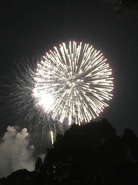 江戸川花火の画像 プリ画像