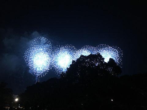 江戸川花火の画像(プリ画像)