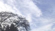 空skiesの画像(空に関連した画像)