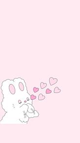 ピンク 可愛い うさぎ 壁紙の画像52点 完全無料画像検索のプリ画像 Bygmo