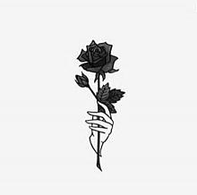 モノクロ 薔薇の画像85点完全無料画像検索のプリ画像bygmo