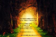 感情の旅路の画像(心 癒しに関連した画像)