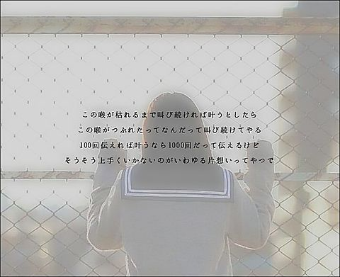 100年初恋/シクラメンの画像(プリ画像)