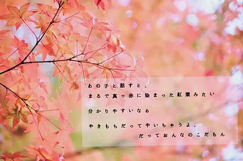 恋①の画像(プリ画像)