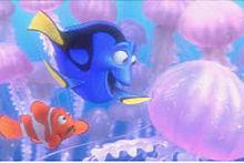 Finding Nemoの画像(ファインディング ドリーに関連した画像)