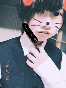 スーツ姿の猫でも愛してください← プリ画像