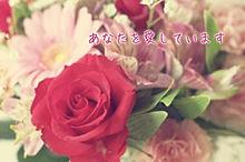 花言葉 -バラ-の画像(あなたを愛していますに関連した画像)