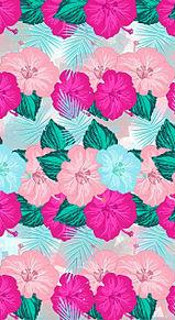 ハイビスカス🌺  花柄 花模様   パターン プリ画像