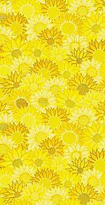 向日葵🌻  花柄 花模様  パターン プリ画像