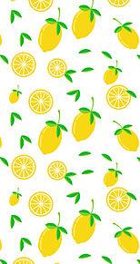 檸檬🍋  レモン🍋  白背景  フルーツの画像(レモンに関連した画像)