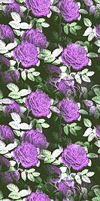 薔薇  バラ  ローズ  花柄  花模様の画像(スタイルに関連した画像)