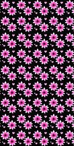 花柄  花模様  黒背景  ピンク プリ画像