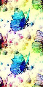 蝶  バタフライ  アゲハ蝶の画像(シームレスに関連した画像)