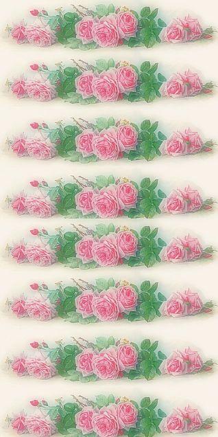 薔薇  バラ  ローズ  パステルの画像 プリ画像